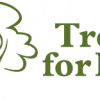 Trees for Life – Traineeship opportunities