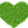 Green Living Day – Saturday 29th September